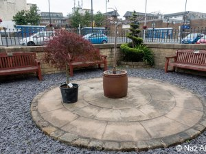 Memorial Garden - replacing the Acer tree.
