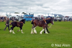 Trawden_Agricultural_Show_2016_16