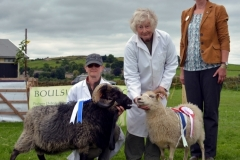 Trawden_Agricultural_Show_2016_6